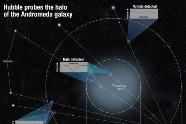 Schematic of how to observe a galaxy halo